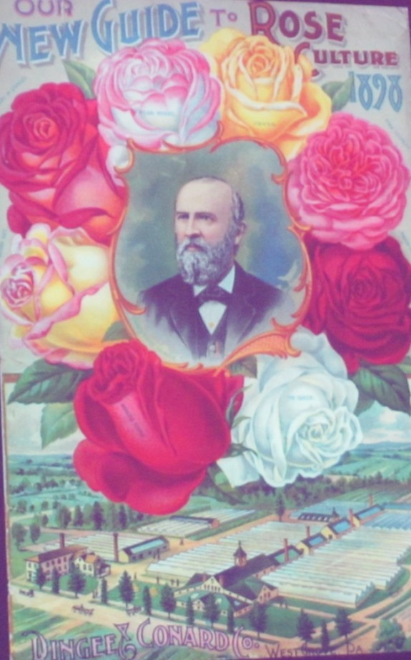Rose catalog