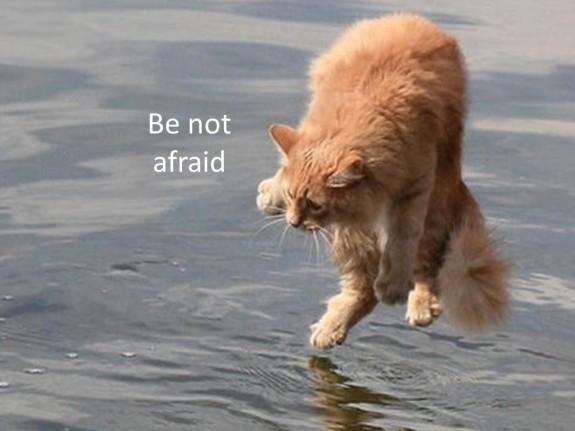 Rainie Be Not Afraid